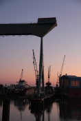 Hamburg Neuenfelde - Cranes in sunset 2