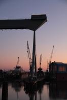 Hamburg Neuenfelde - Cranes in sunset 2