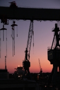 Hamburg Neuenfelde - Cranes in sunset