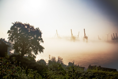 Hamburg Hafen & Elb - Cranes in fog 2