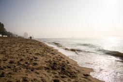 Hamburg Hafen & Elb - Cranes in fog