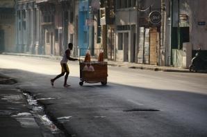 Habana24